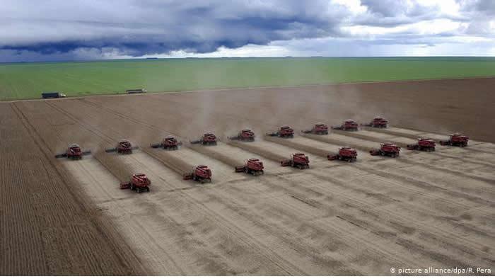 Como o aquecimento global ameaça a agropecuária brasileira