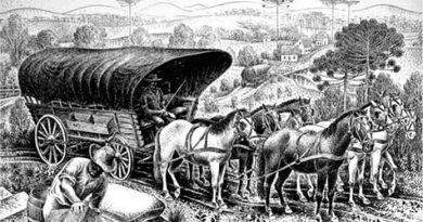 Dia do automóvel: disrupção, cavalos e mobilidade